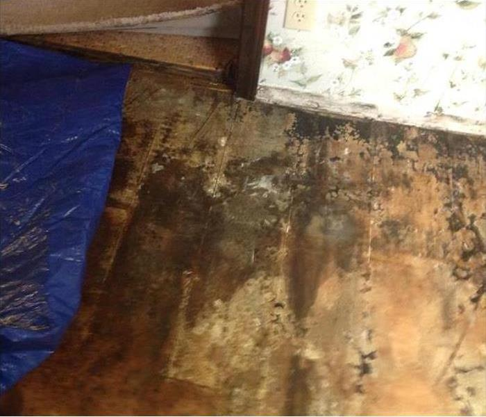 Closeup of Water Damaged wall and Removed hardwood flooring