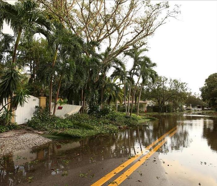 Storm Damage Why We Are The Leader In Flood Damage Restoration In Indian Rocks Beach