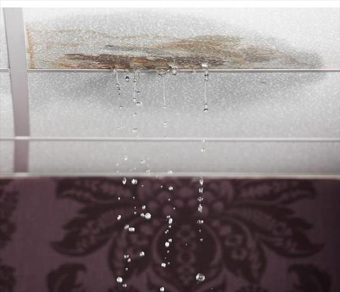 Water Damage Signs of Water Damage in Your Older Belleair Bluffs Home