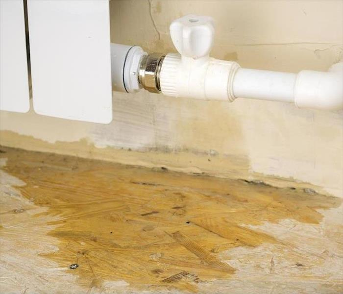 Water Damage Our App Expedites Water Removal in Pinellas County