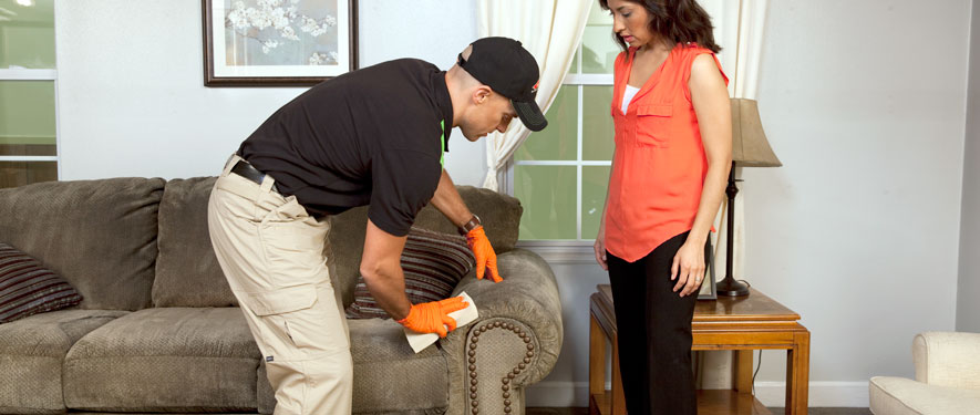 Largo, FL carpet upholstery cleaning